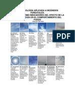 Las+Nubes+Como+Indicadores+de+La+Actividad+en+Incendios+Forestales