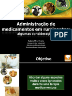 Aplicação de medicamentos em bovinos