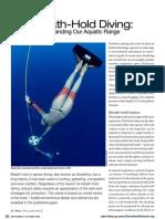 pollock_bh_review.pdf