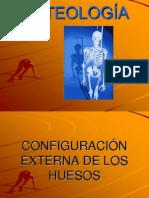 Osteologia
