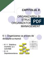 STRUCTURI ORGANIZATORICE