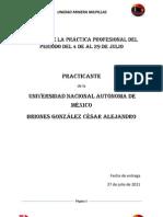 Reporte Cesar Briones.docx