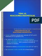 reacciones enzimatics