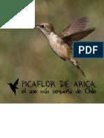 Picaflor (1)
