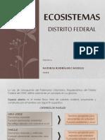Ecosistemas Documento