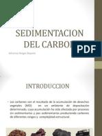 Sedimentacion Del Carbon
