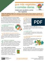 verduras consejos.pdf