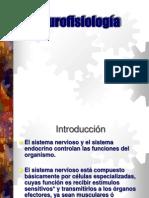 Neuro Fisiologia 1