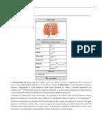 Hemorroides.pdf