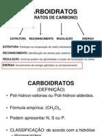 Aula Enfermagem - Carboidratos (1)