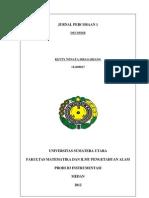 1.DECODER.pdf
