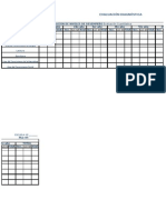 Evaluación cuantitativa 2009(2)