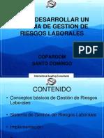 18497183 Como Desarrollar Un Sistema de Gestion de Riesgos Laborales
