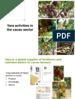 Sponsor Quimbo Yara Activities in Cacao