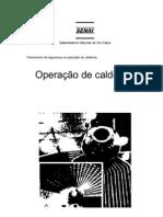 47719372 SENAI Operacao de Caldeiras