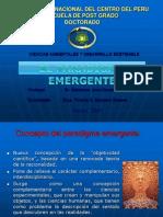 paradigma-emergente-ymz
