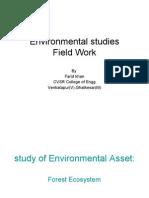 ES Field Work