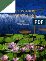 Rev Anfis Sistem Saraf