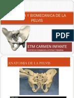 Anatomia y Biomecanica de La Pelvis