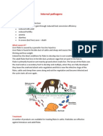 Cattle Parasites