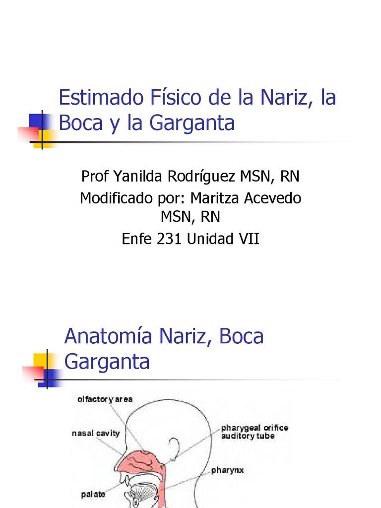 Examen Fisico Nariz Boca Garganta