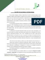 orientacion_vocacional_ocupacional.pdf