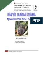 83910661 Karya Ilmiah Etanol Dari Kulit Nanas