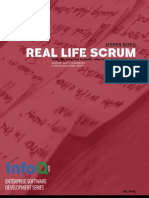 Real Life Scrum_final1