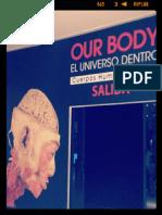 OUR BODY (EL UNIVERSO DENTRO)