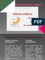Vesícula, Ictericia Marco Núñez
