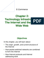 Technology Infrastructure and the world wide web