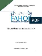 Rede Pneumatica 2008 - Relatorio