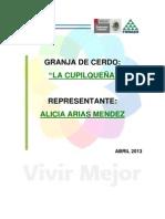 PROYECTO GRANJA DE LA CUPILQUEÑA