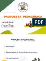 Proyecto_pedagogico Dimension Comunicativa