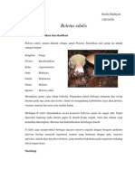 13011076 Boletus edulis.pdf