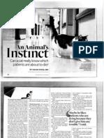 An Animals Instinct
