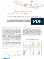 01 VF Panorama 2013 Tendances a Court Terme de l Industrie Gaziere
