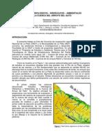 Estudios Hidrológicos - Hidráulicos - Ambientales en la Cuenca del Arroyo Del Gato