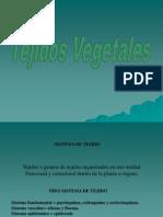 tejidos-120219134351-phpapp01