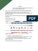 PRACTICA 5 MICOONDAS.pdf