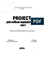 Proiect Stoica