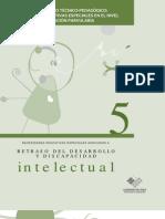 5. Gu a Intelectual
