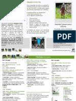 Programa Provisório_SEI