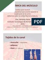 Bioquimica Del Musculo