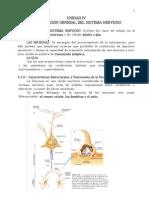 Unidad 4 Organizacion General y Estructura Del Sistema Nervioso
