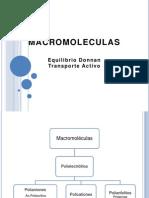 Macromoleculas-GFV