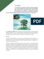 UNIDAD 3 Ambiental