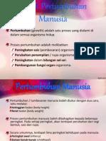 corakpertumbuhanmanusia-130225211048-phpapp02