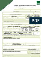 ACHS Formulario+DIEP