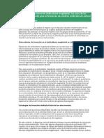 Estrategias de formación en el sindicalismo magisterial.doc